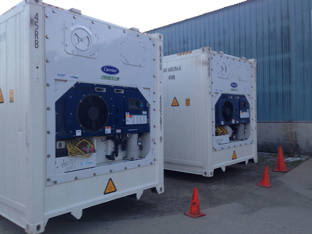 40 Ft Refrigerated Containers Moon Refrigeration